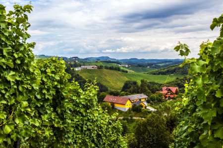 Picture no: 10611332 Steiermark Created by: wompus