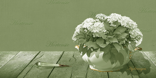 Picture no: 10629506 Hortensie im Nostalgie Stil 2 Created by: Mausopardia