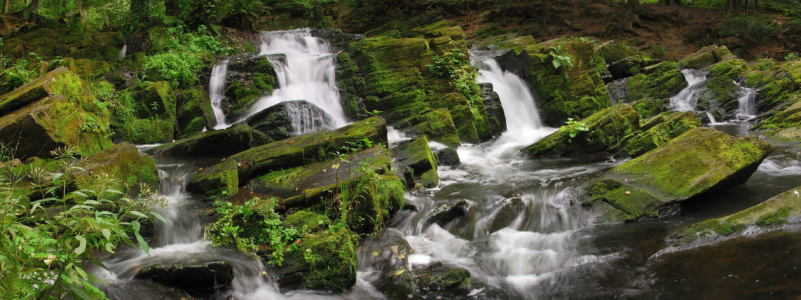 Picture no: 10650012 Selkewasserfall Created by: Steffen Gierok