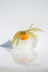 Picture no: 10656594 Frostiges Früchtchen - Physalis Created by: Heike Hultsch