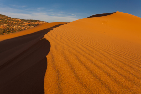 Picture no: 10660302 Sand Dune Created by: Photographicjourney