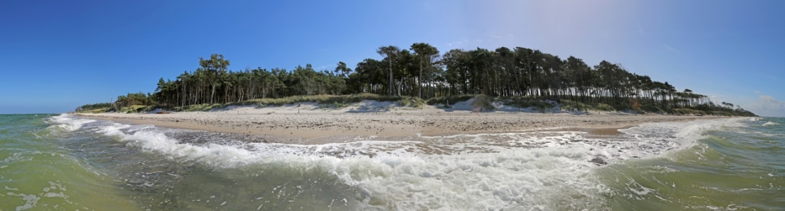 Picture no: 10682398 Ostseepanorama - Weststrand Prerow Created by: Marcel Schauer