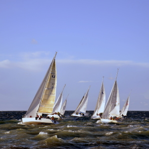 Picture no: 10685044 Regatta Created by: GUGIGEI