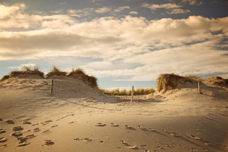 Picture no: 10686990 The Dune Created by: FotoDeHRO