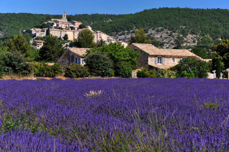 Picture no: 10695917 Banon Provence Created by: KundenNr-160338