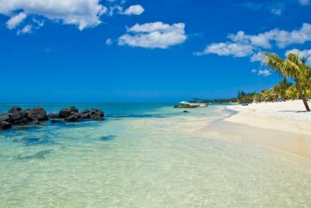 Picture no: 10720637 Mauritius Meer und Strand Created by: cibo
