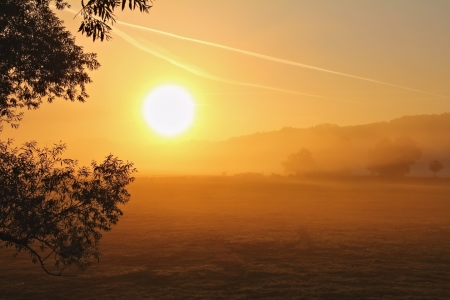 Picture no: 10724165 Sonne und Nebel Created by: falconer59