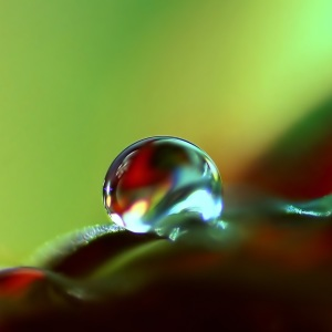 Picture no: 10781409 Buntes Created by: youhaveadream