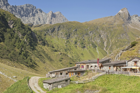 Picture no: 10786929 Mitteldorfer Alm Created by: EderHans