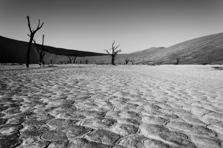 Picture no: 10824735 Namibia B&W Created by: DenisFeiner