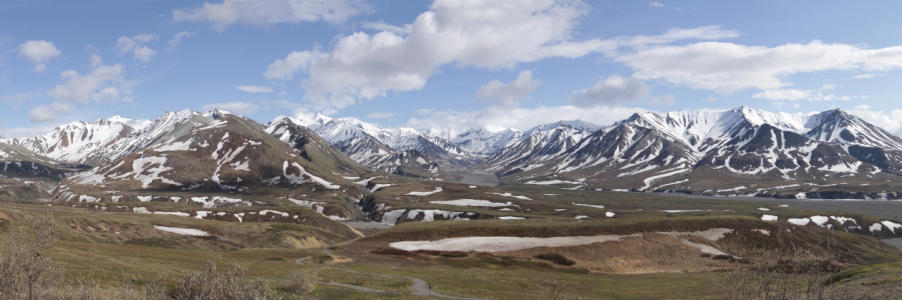 Picture no: 10906159 Panorama-Denali Nationalpark Created by: littlebear