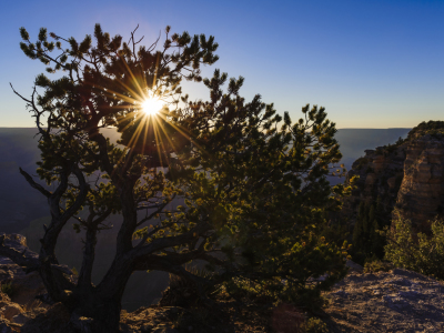 Picture no: 10915199 Grand Canyon sunrise Created by: DenisFeiner