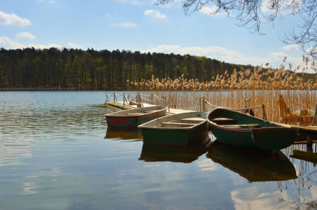 Picture no: 10924341 Fischerboote am See Created by: Atteloi