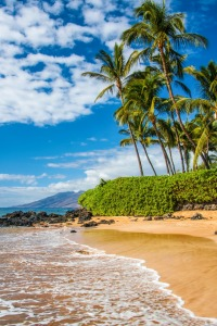 Picture no: 10929103 Maui Beach - Hawaii Created by: TomKli