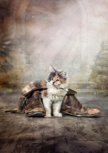 Picture no: 10956677 runaway kitten. Created by: René de Brunn