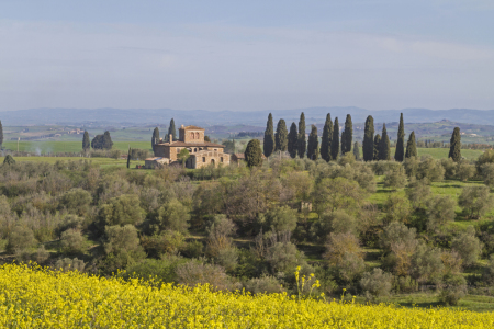 Picture no: 10964127 Im Val di Orcia Created by: EderHans