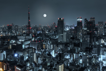 Picture no: 10976412 TOKYO 14 Created by: Tom Uhlenberg