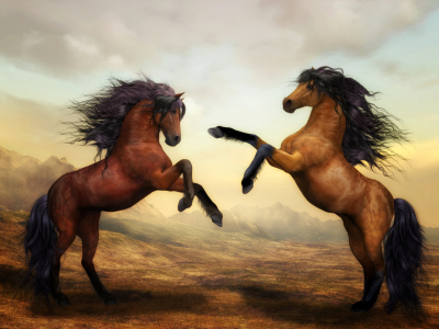 Picture no: 10982914 Wild Horses Created by: Susann Mielke