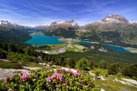 Picture no: 10987072 Engadin im Sommer Created by: suteracher