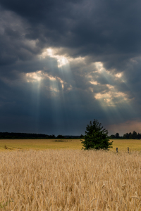 Picture no: 10992436 Wolkenlöcher Created by: TomKli