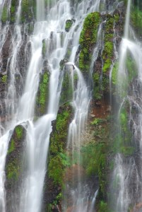 Picture no: 11027917 McArthur-Burney Falls Created by: UCH