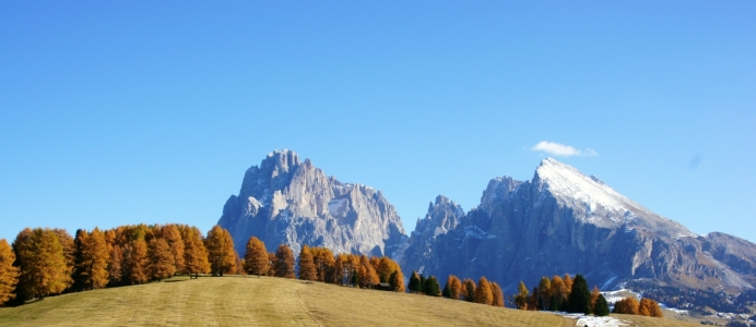 Picture no: 11045601 Dolomiten Created by: babalu