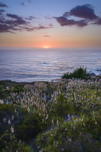 Picture no: 11067555 Big Sur Sunset Created by: DenisFeiner