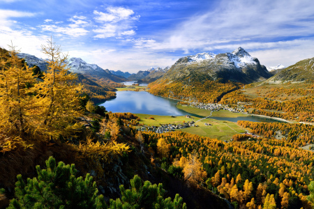 Picture no: 11081597 Engadin im Herbst Created by: suteracher
