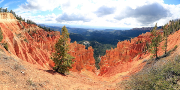 Picture no: 11111127 Bryce Canyon Created by: fotoping