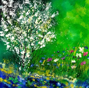 Picture no: 11127408 seringa 88 Created by: Pol Ledent