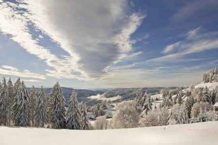 Picture no: 11140004 Schwarzwald Created by: IngeborgF