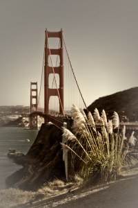 Picture no: 11142006 SAN FRANCISCO Golden Gate Bridge Created by: Melanie Viola