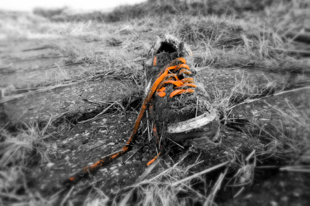 Picture no: 11144400 Lost Shoe Created by: PictureMania