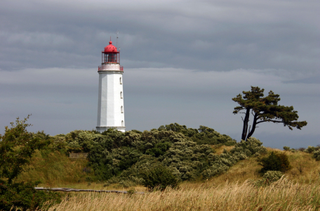 Picture no: 11177720 Leuchtturm auf Hiddensee Created by: birdy