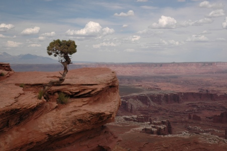 Picture no: 11183374 Canyonlands NP Created by: Secheln