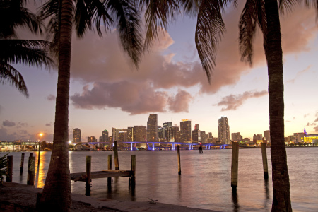 Picture no: 11214832 Skyline von Miami, Florida Created by: reisefoto