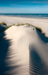 Picture no: 11280152 Langeoog - Sandy Beach Created by: Reiner Würz