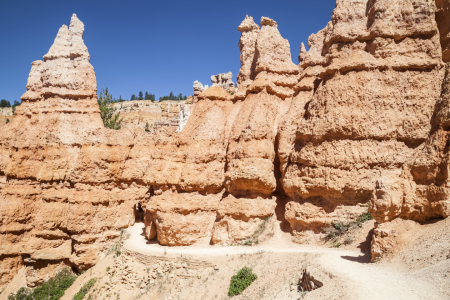 Picture no: 11313776 BRYCE CANYON Weg durch die Hoodoos Created by: Melanie Viola