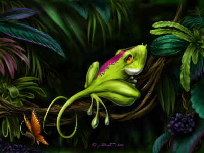 Picture no: 11332053 Mimikryfrosch Created by: OceanPlanet