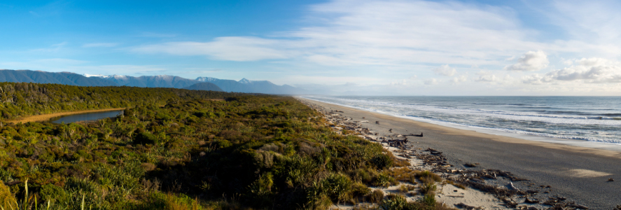 Picture no: 11342554 Neuseeland - einsamer Strand bei Haast Created by: mao-in-photo