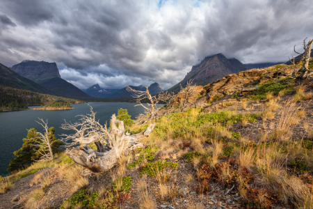 Picture no: 11343756 Sun Point - St. Mary Lake - West Glacier NP - USA Created by: TomKli