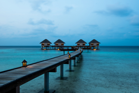 Picture no: 11352920 Wasserbungalows Created by: hannes cmarits