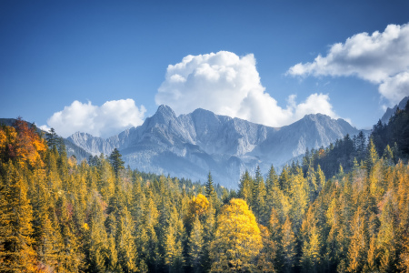 Picture no: 11376791 Herbstliche Alpen Created by: magann