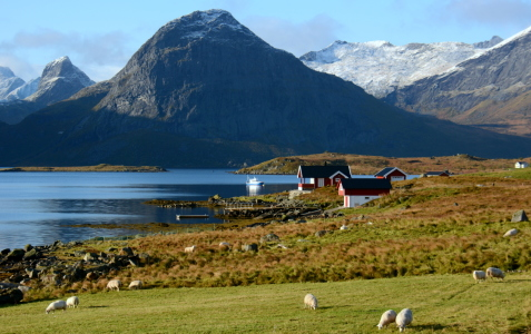 Picture no: 11377049 Lofoten Created by: GUGIGEI