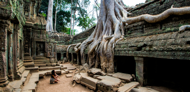 Picture no: 11378661 Panorama aus dem Ta Prohm Tempel, Angkor 2013 Created by: danielgiesenphotography