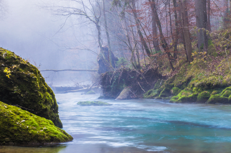 Picture no: 11405514 Nebel am Fluss Created by: ELIO