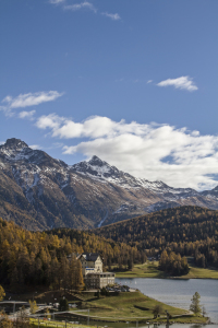 Picture no: 11411767 St. Moritzersee Created by: EderHans