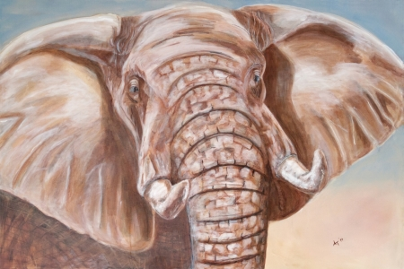 Picture no: 11416954 Sanfter Riese, Elefant Created by: Annett Tropschug