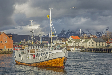 Picture no: 11428117 Fischkutter in Svolvaer Created by: EderHans