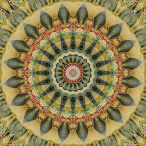 Picture no: 11434730 Mandala erinnere Dich an mich Created by: Christine Bässler